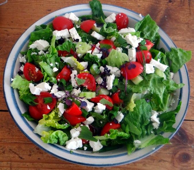 Salat,Karotten,Bratkartoffeln,Spiegelei (9)