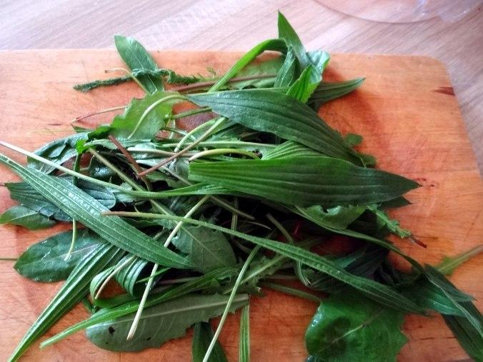 Spargel,Ravioli mit Wildkräuterfüllung (5)
