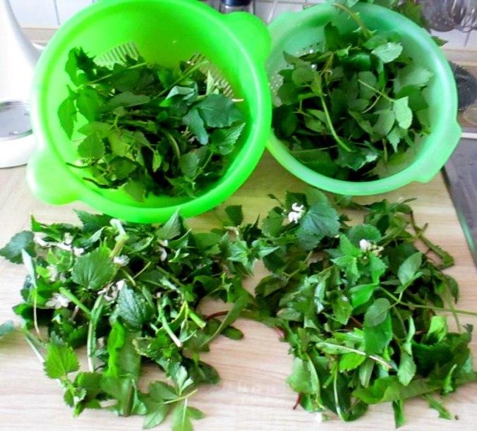 Wildkräuter Salat,Boullion Kartoffeln (11)