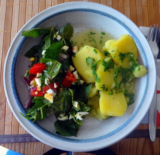 Wildkräuter Salat,Boullion Kartoffeln (2)