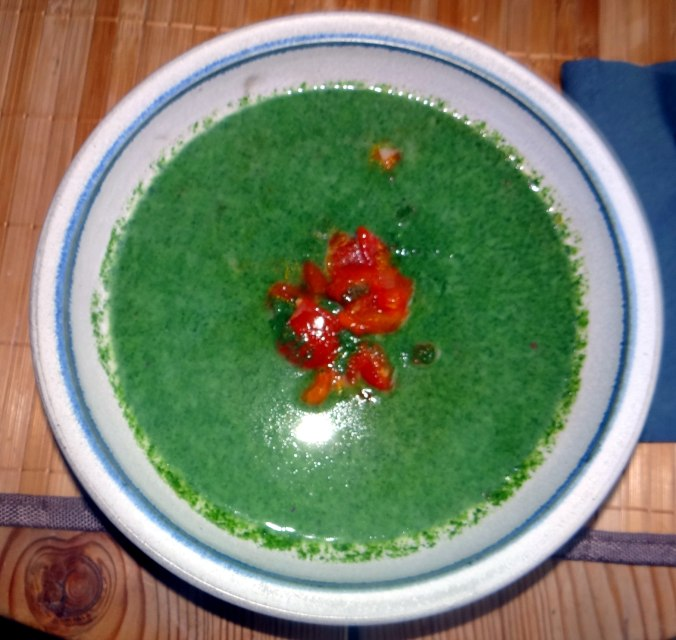 Brennessel-Tomatensuppe (1)