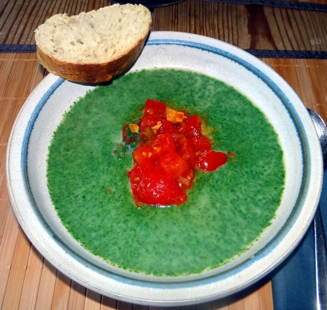 Brennessel-Tomatensuppe (2)