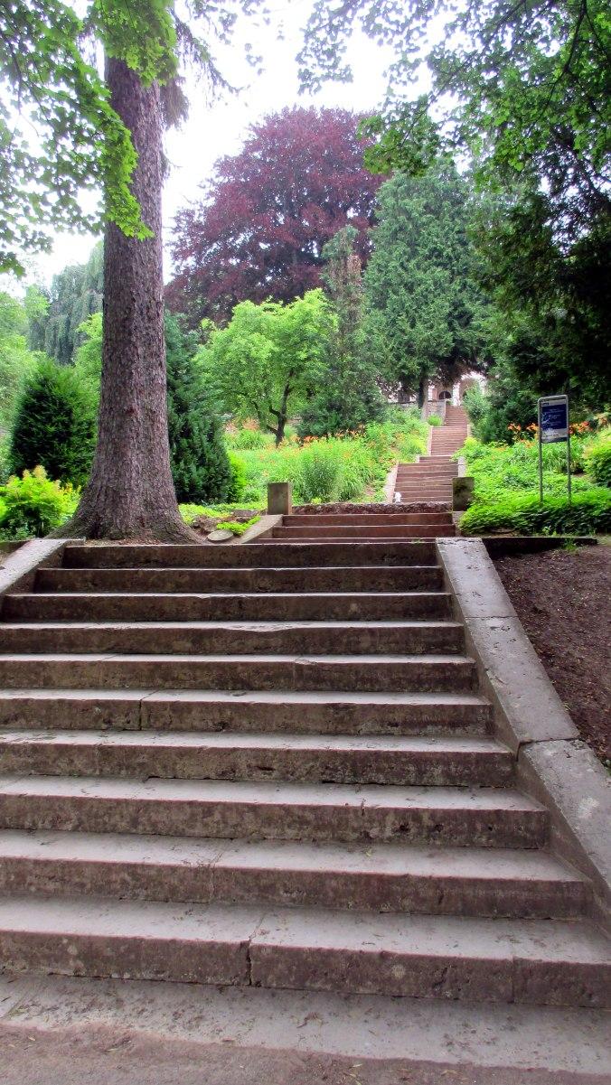 Goethepark (5)