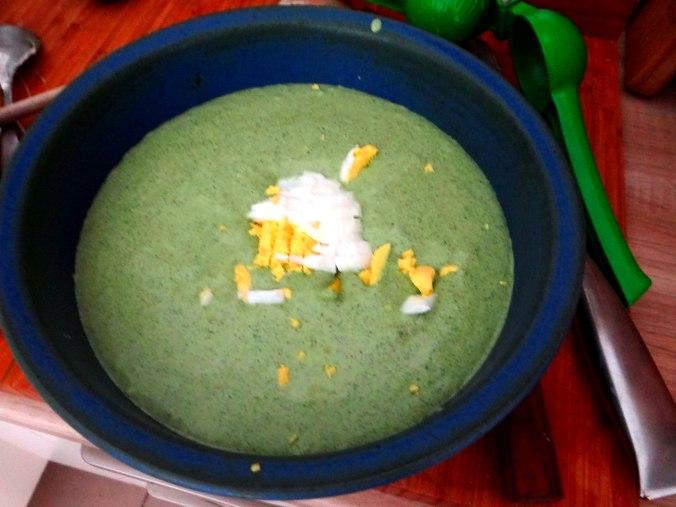 Grüne Soße aus Wildkräutern,Pellkartoffeln,Joghurtspeise mit Waldhe3idelbeeren (18)
