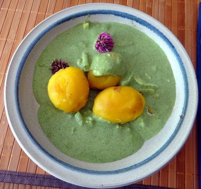 Grüne Soße aus Wildkräutern,Pellkartoffeln,Joghurtspeise mit Waldhe3idelbeeren (2)