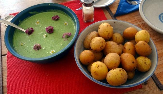 Grüne Soße aus Wildkräutern,Pellkartoffeln,Joghurtspeise mit Waldhe3idelbeeren (22)