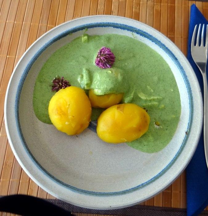 Grüne Soße aus Wildkräutern,Pellkartoffeln,Joghurtspeise mit Waldhe3idelbeeren (23)