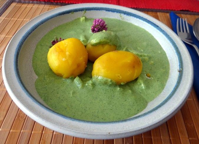 Grüne Soße aus Wildkräutern,Pellkartoffeln,Joghurtspeise mit Waldhe3idelbeeren (24)