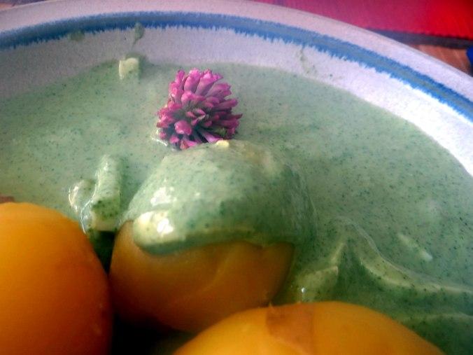 Grüne Soße aus Wildkräutern,Pellkartoffeln,Joghurtspeise mit Waldhe3idelbeeren (25)