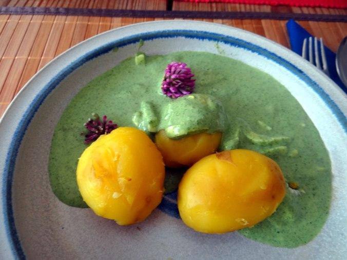 Grüne Soße aus Wildkräutern,Pellkartoffeln,Joghurtspeise mit Waldhe3idelbeeren (3)
