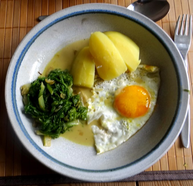 Mangold,Salzkartoffeln,Spiegelei,vegetarisch (2)