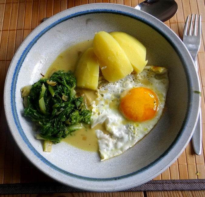 Mangold,Salzkartoffeln,Spiegelei,vegetarisch (23)