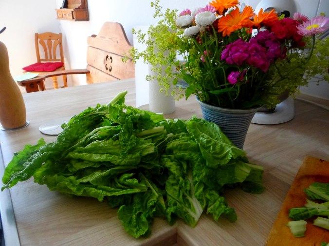Mangold,Salzkartoffeln,Spiegelei,vegetarisch (6)