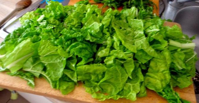 Mangold,Salzkartoffeln,Spiegelei,vegetarisch (8)