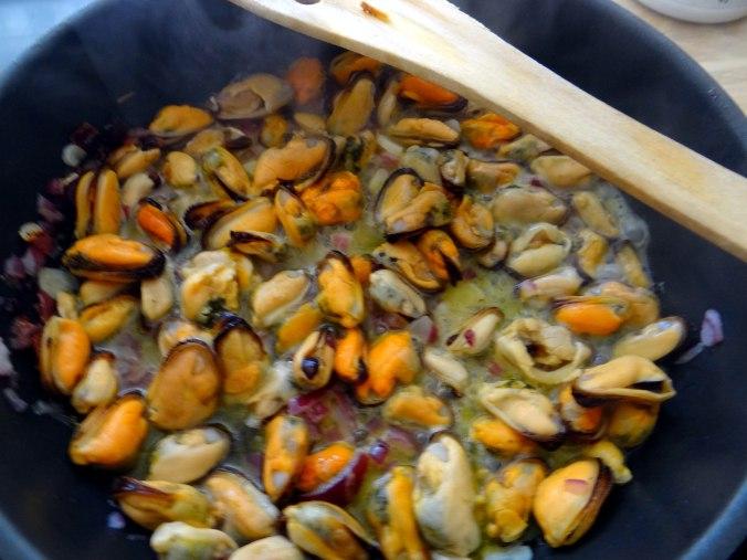 Muschel-Linsensalat,Gurkensalat,pescetarisch (11)