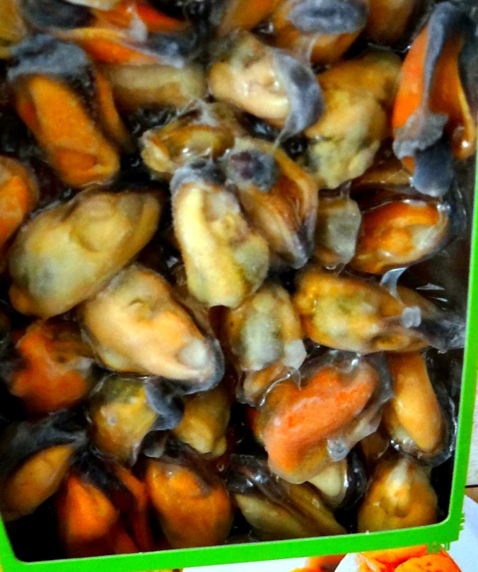 Muschel-Linsensalat,Gurkensalat,pescetarisch (6)
