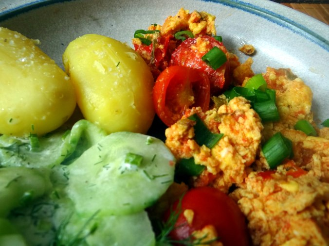 Rührei mit Tomaten,Pellkartoffeln,Gurkensalat,Erdbeeren,vegetarisch (3)