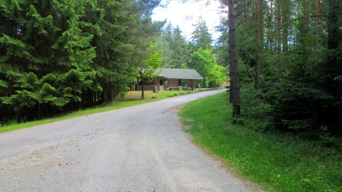 Wald ,Spaziergang,Sonntag,Vormittag (22)