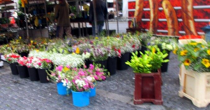 Wochenmarkt (4)