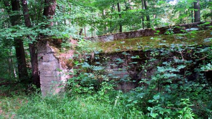 Buchenwald-5.7 (6)