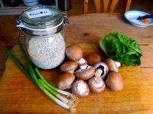 Champignon Risotto,Salat,vegetarisch (8)
