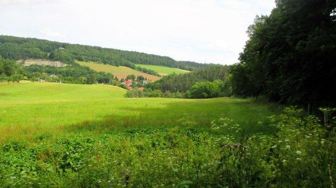 Goethewanderweg (6)