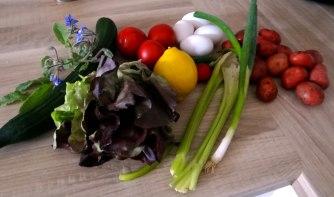 Kartoffeln,Rührei,Salate (5)
