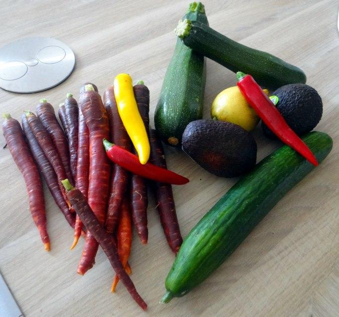 Lauwarmer Zucchinisalt,gedämpfte Möhren,Gurkensalat,Guacamole (4)