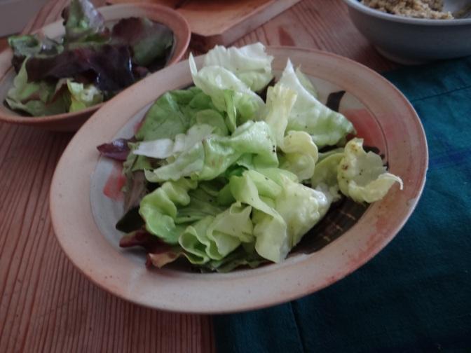 Rösti,Guacamole,Tapenade,Salat,vegetarisch (28)