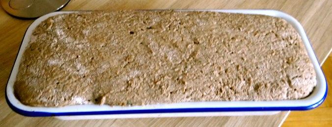 Roggen Vollkorn Brot (5)