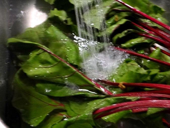 Rote Beete Gemüse,Garnelen,Pellkartoffeln (13)
