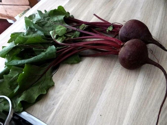 Rote Beete Gemüse,Garnelen,Pellkartoffeln (5)