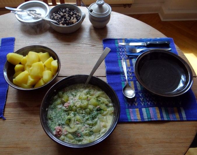 Schmorgurken,Johannisbeeren (4)