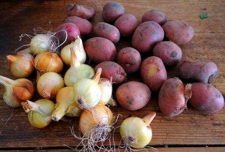 Zitronen-Hähnchenbeine (5)