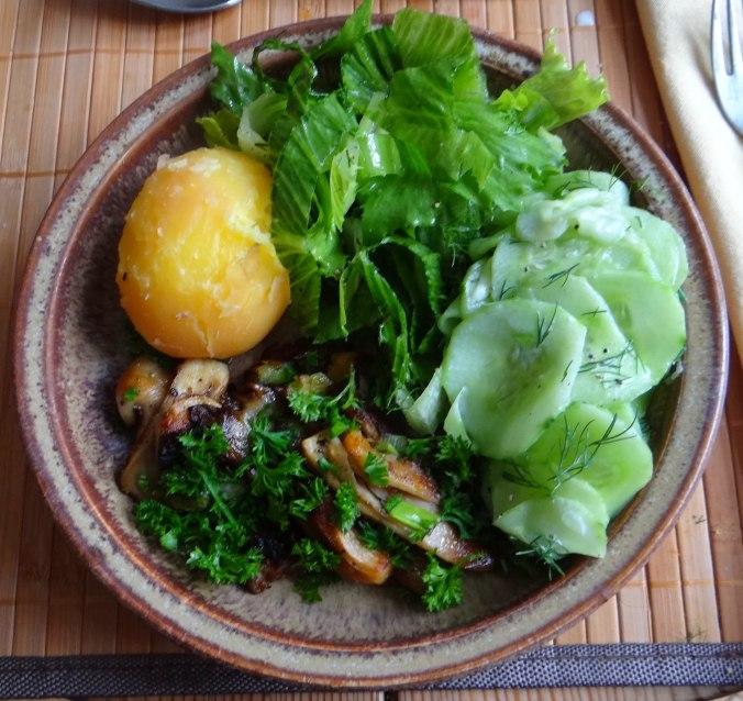 Austernpilze,Gurkensalat,Kopfsalat,Pellkartoffeln,vegetarisch (1)