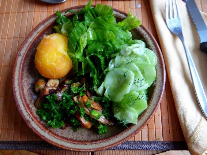 Austernpilze,Gurkensalat,Kopfsalat,Pellkartoffeln,vegetarisch (10)