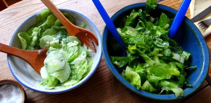 Austernpilze,Gurkensalat,Kopfsalat,Pellkartoffeln,vegetarisch (3)