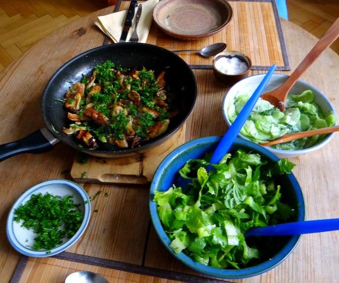 Austernpilze,Gurkensalat,Kopfsalat,Pellkartoffeln,vegetarisch (9)