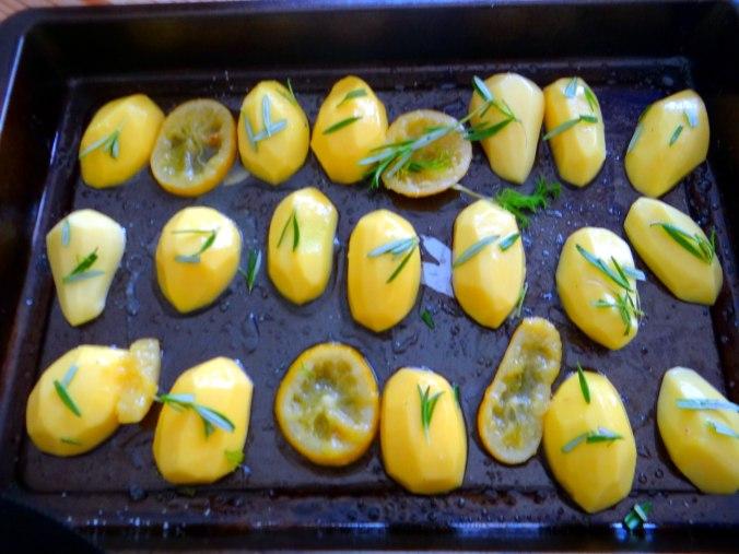 Forelle mit Zitronen Kartoffeln,Pflücksalat (10)