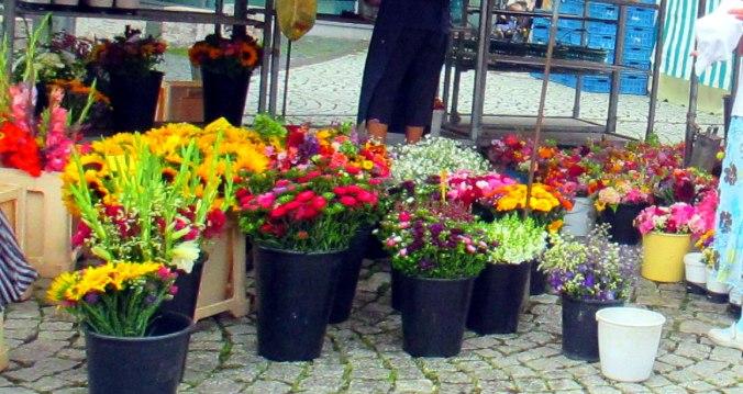Gang über den Wochenmarkt (3)