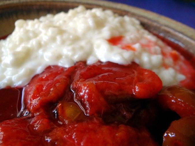 Reisbrei,Pflaumenkompott,Smoothie,vegetarisch (3)