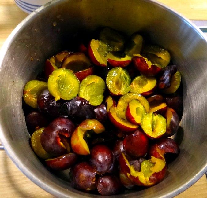 Reisbrei,Pflaumenkompott,Smoothie,vegetarisch (9)