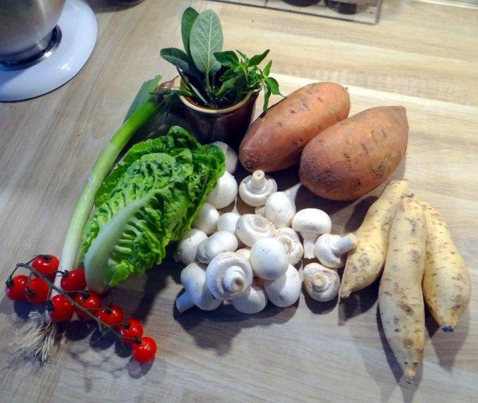 Pastinaken Pommes,Champignon,Ei,Salat,Birnenmus 1 (7)