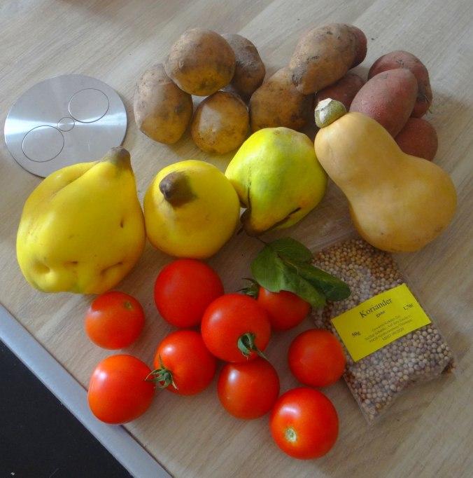 Pastinaken Pommes,Champignon,Ei,Salat,Birnenmus 1 (8)