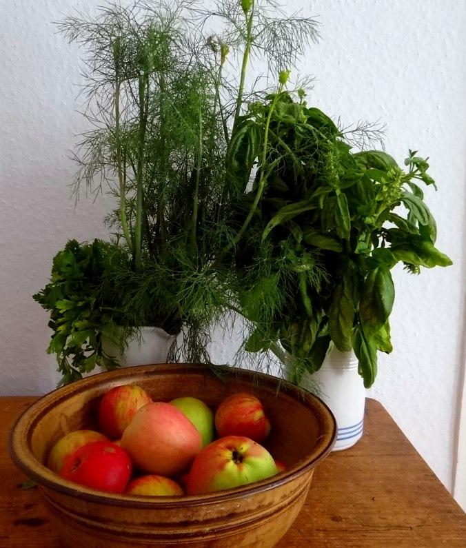 Quark,Kartoffeln,Salat (7a)