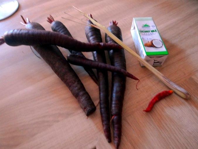 Schwarze Möhren mit weißem Quinoa (5)