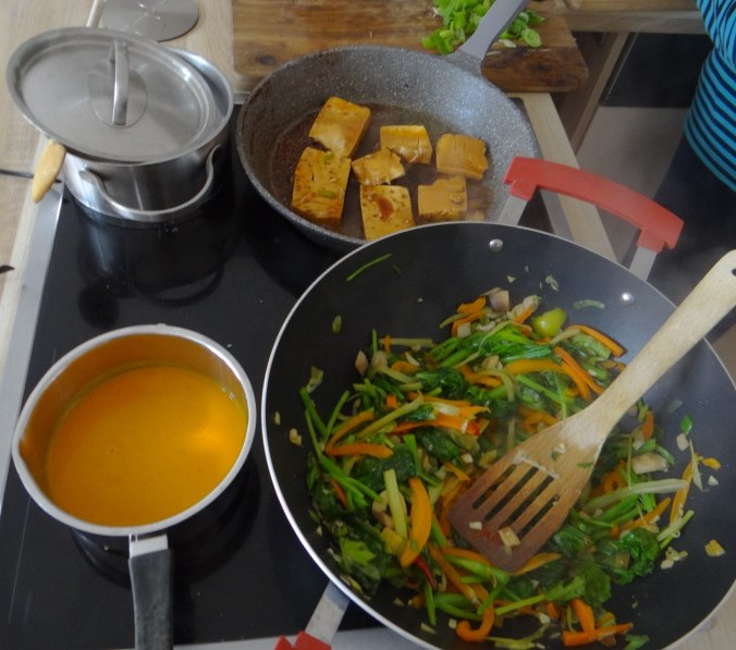 Senfgrün,Reis,Tofu,vegan (11)