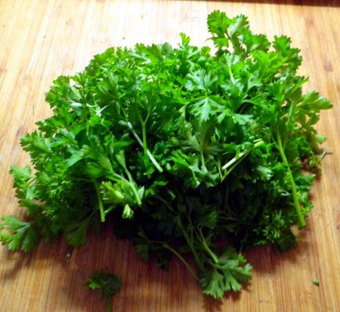 Wickelklöße,Petersiliensoße,Gurkensalat,Joghurtspeise (19)