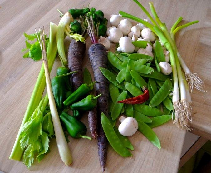 Wokgemüse mit Reis (5)