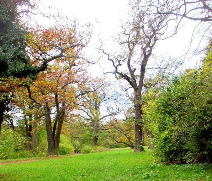 Belvedere im Herbst (11)
